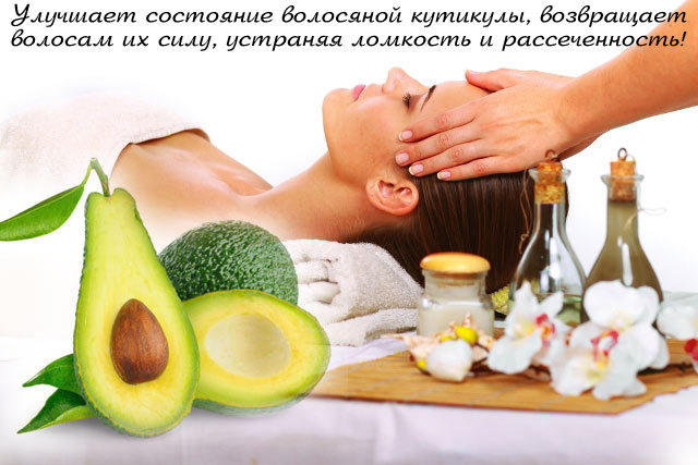 avocado-oil-for-heair